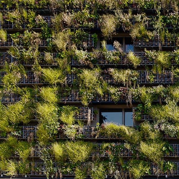 Borie & Strata | CBA | Christian Bauer & Associés Architectes s.a.